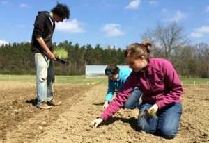 Planting is well under way at Seminary Hill Farm
